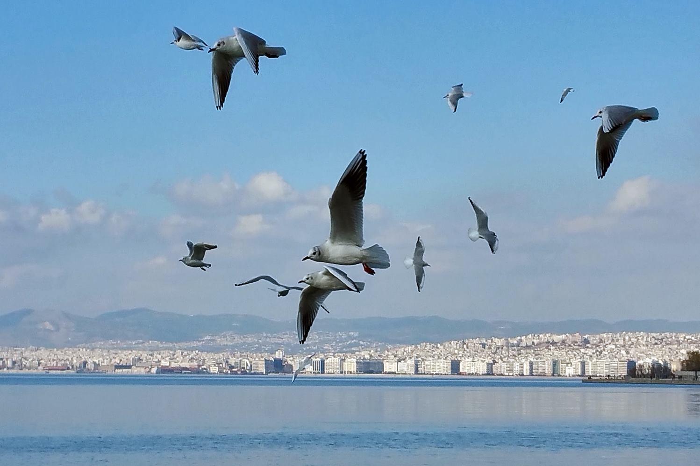 http://thessaloniki%20stay%20|%20abc%20Hotel%20|%20Thessaloniki%20Greece